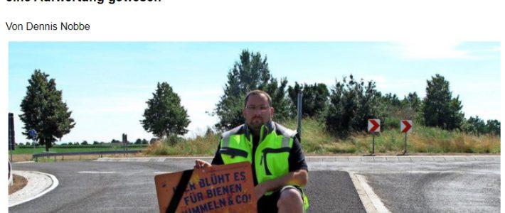 PAZ: Ärger um asphaltierte Verkehrsinseln